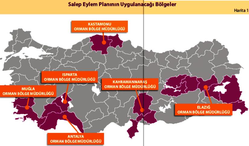 Harita, salep eylem planının uygulanacağı bölgeler.png