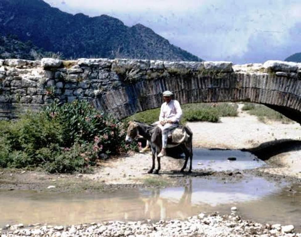 Antalya Finiker Lmyra 1954.jpg