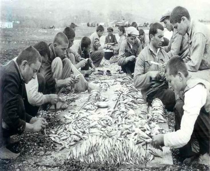 Beşikdüzü Köy Enstitüsünde balık işleyen  öğrenciler.jpg
