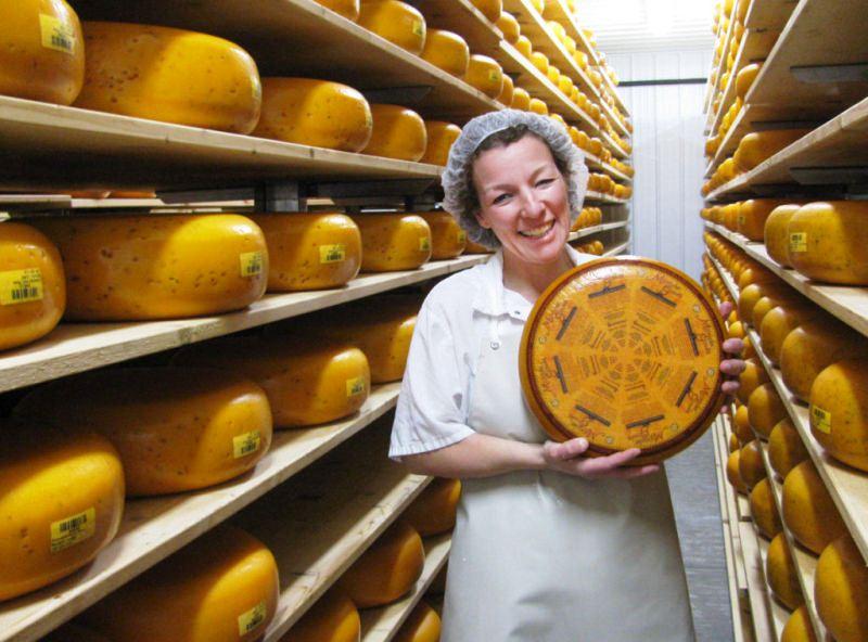 kendine has 3 çeşitten fazla peyniri olmayan hollanda ihracatta dinya ikincisi oldu.jpg