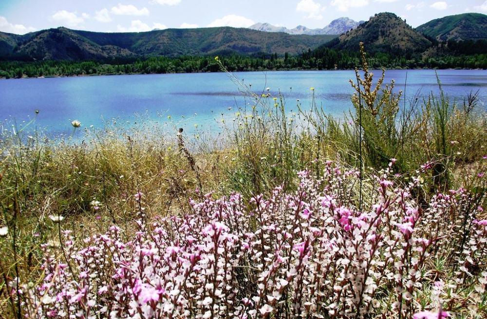 Gölcük Gölü çevresi biyolojik çeşitlilik zengini.JPG