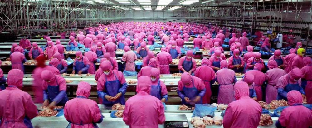 2011 yapımı samsara belgeselinde toplu üretim ve tüketim kültürü yansıtılmıştı.jpg