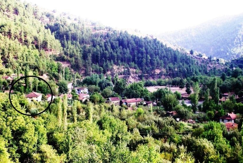 Darıbükü köyünün camisi suya gömülmeden önce.jpg