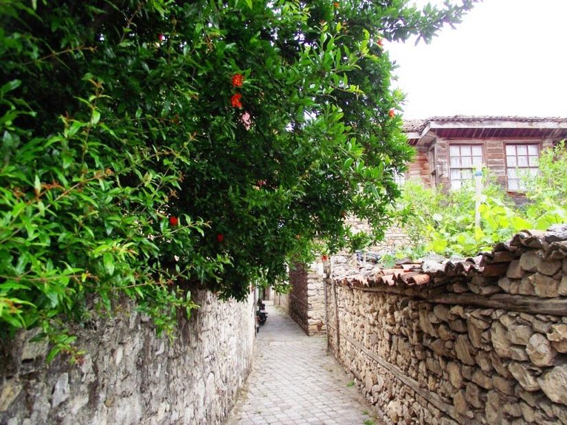 Nis Adasında bir sokak.JPG