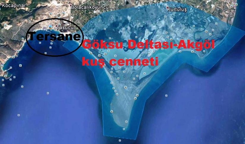 uyd2.jpg