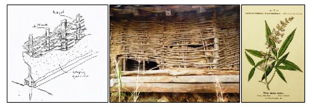 hayıt bitkisi ile yapı örgü sistemi.png