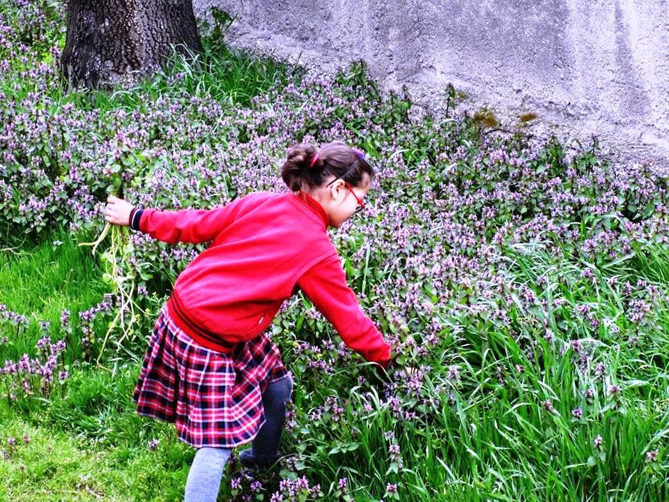Faik Tonguç kütüphanesi bahçesi. fot. fatih erdoğan.jpg
