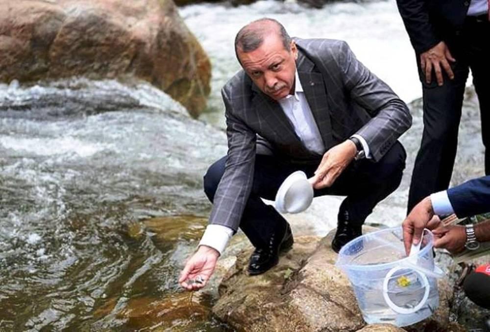 Erdoğan Rize'de balıklandırma töreninde.jpg